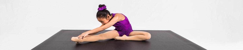 Gerriets Home Dance Studio