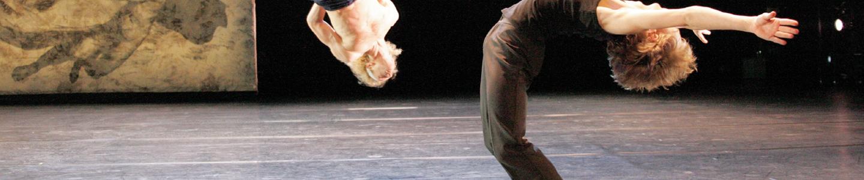 Base para suelos de danza VARIO ELASTIC