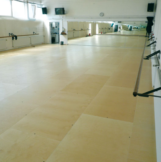 VARIO ERGODANCE Sprung Floor Systems