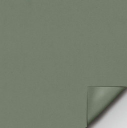 PANORAMA - folia do projekcji tylnej