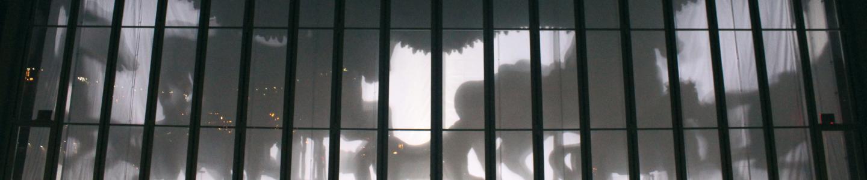 2011-janes-carousel-new-york-cat.jpg