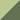 pastel green/reed green